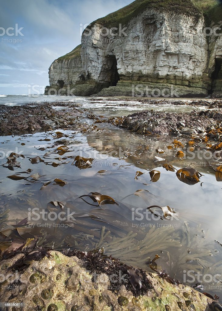 Rockpools and chalk cliffs at Flamborough Head stock photo