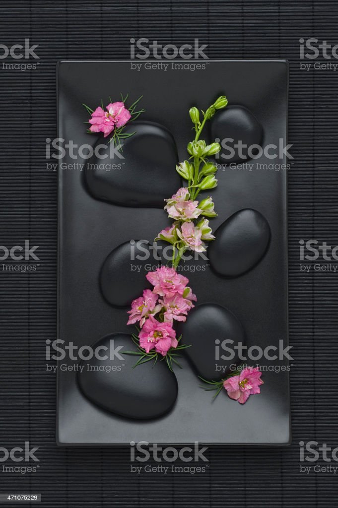 Rocks and Flowers royalty-free stock photo