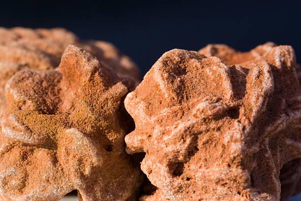 roches et minéraux-barytine «rose» - rose des sables photos et images de collection