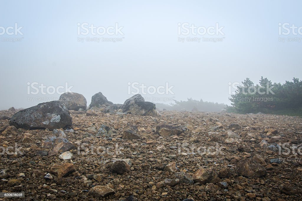 Rocks and stones on a very foggy day in Autumn foto royalty-free