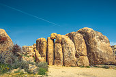 Joshua Tree National Park , California