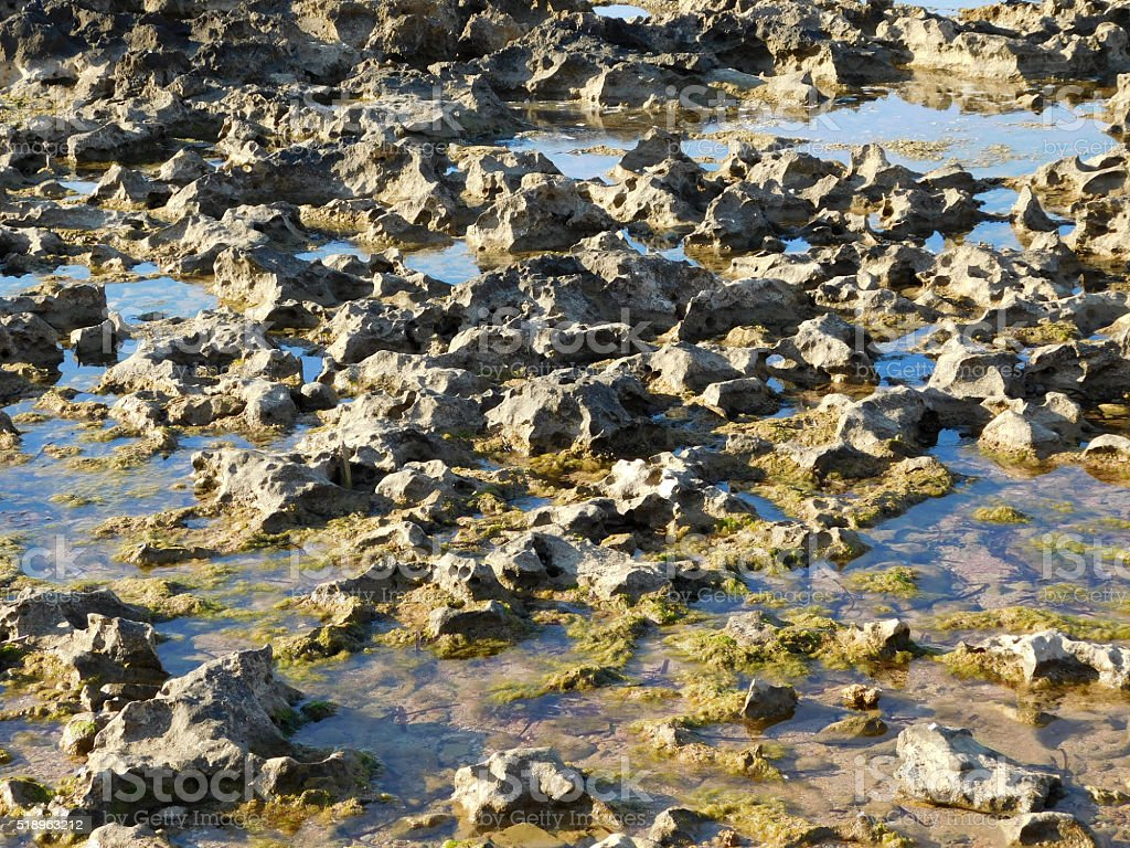 rocks by the sea stock photo