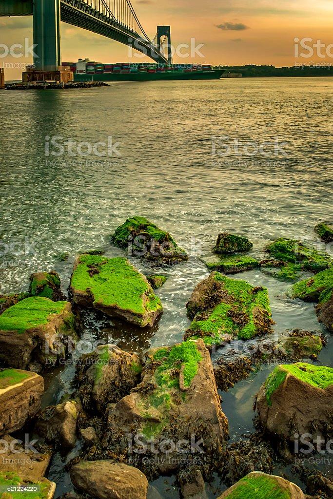 Rocks covered in green moss next to Verrazano bridge stock photo