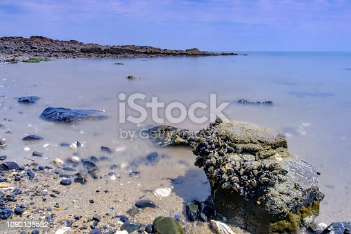 Rocks covered with mussels and barnacles at the beach at the coast of Brittany, France during summer.