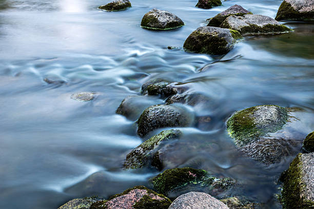 Rocks in langsam rinnig stream – Foto