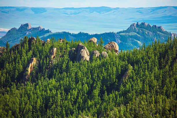 rocks in the forest - siberië stockfoto's en -beelden