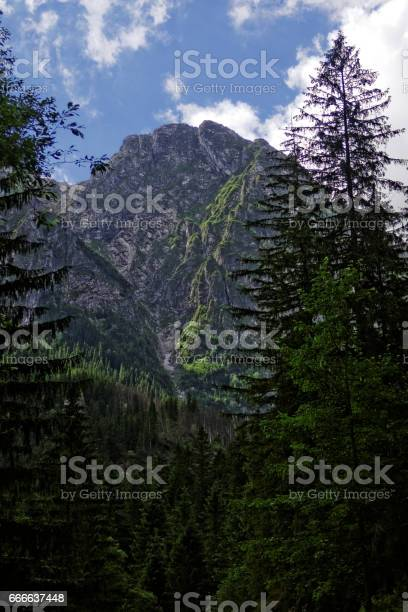 rocks in the mountains