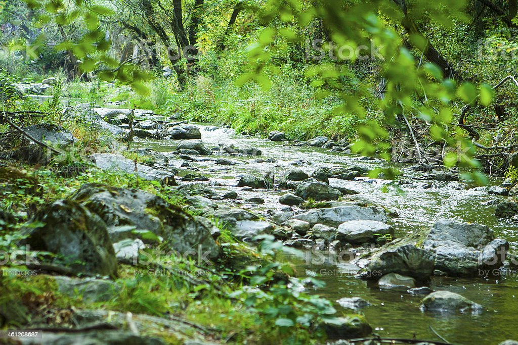 Rocks of narrow forest river in mountains stock photo