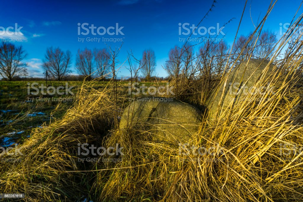 Rocks on a meadow on a sunny day stock photo