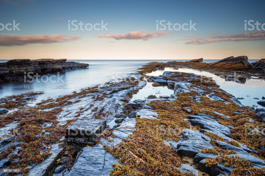 Rocks on Howick Coastline stock photo