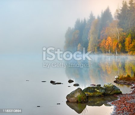 Autumn scenery at the lake, smog, rocks on water's edge and vibrant colorful trees
