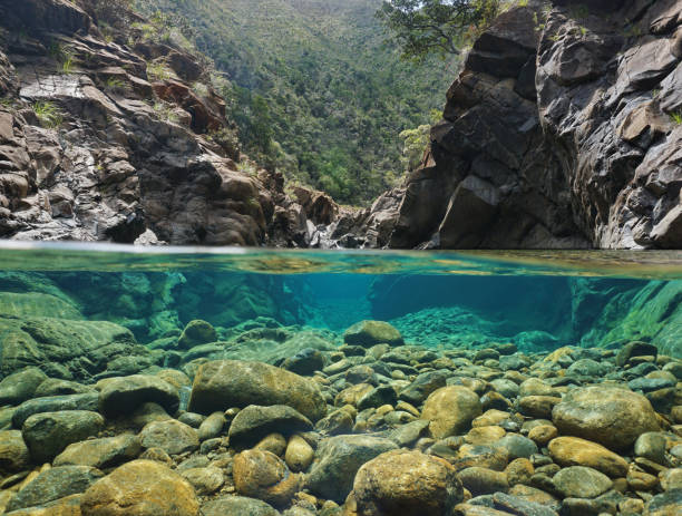Rocks over and under the water in a river Rocks over and under the water split by waterline in a river with clear water, Dumbea river, New Caledonia shallow stock pictures, royalty-free photos & images
