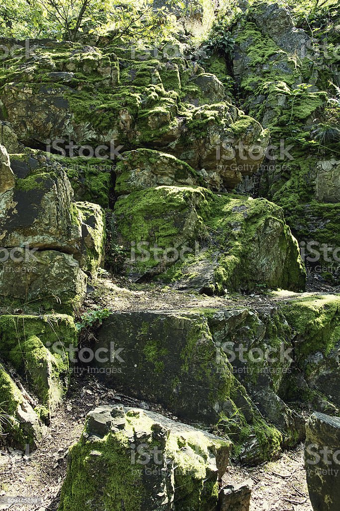 Rocks overgrown with moss stock photo