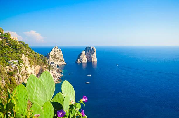 rocks (capri island - opuntia robusta fotografías e imágenes de stock