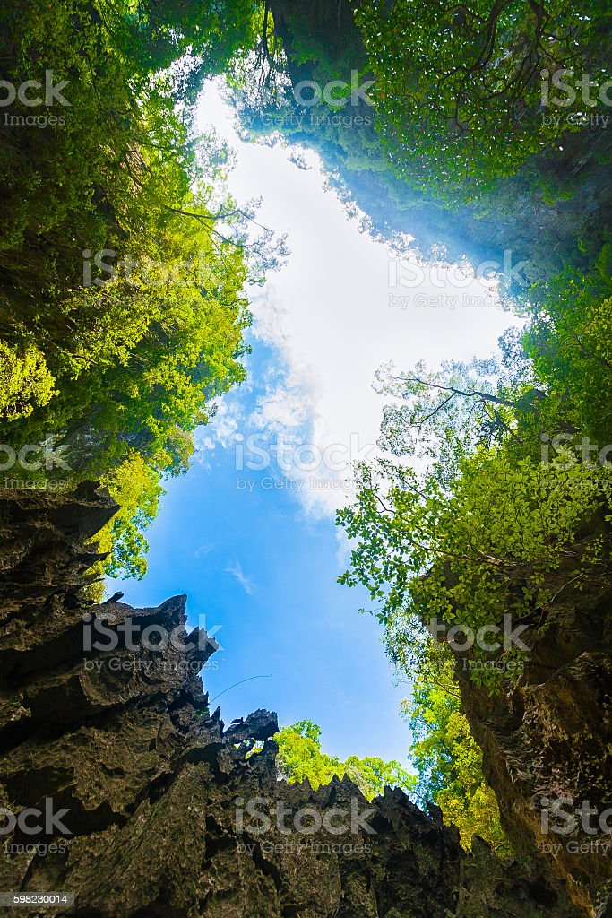Rocks, Rainforest and Sky foto royalty-free