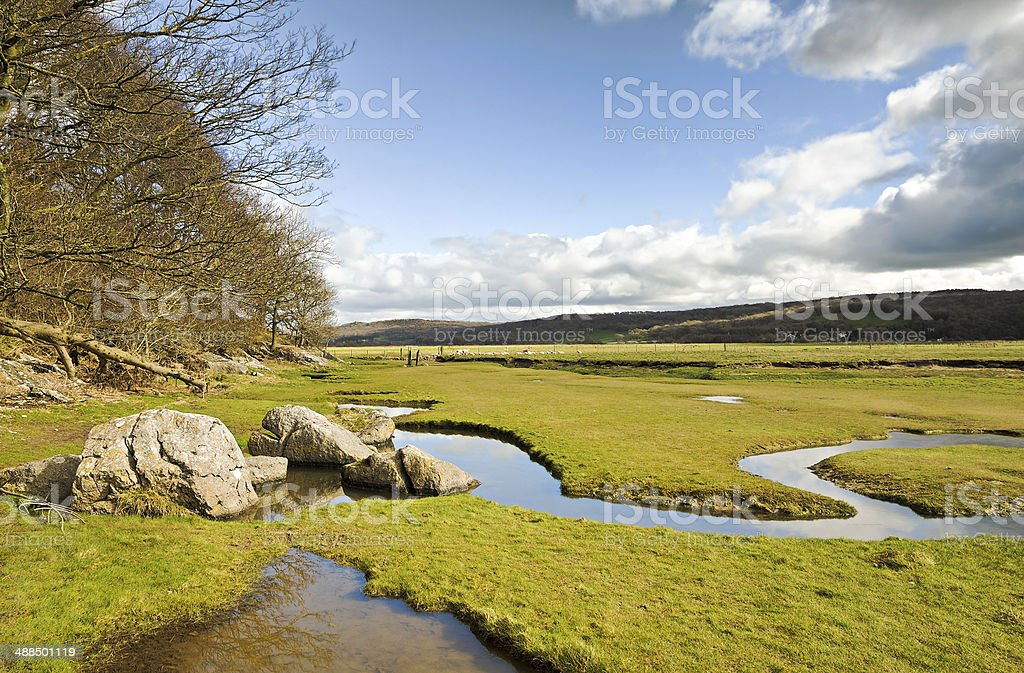 Rocks, stream and trees at Silverdale stock photo