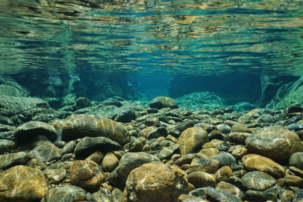 Rocks underwater on riverbed with clear freshwater Rocks underwater on riverbed with clear freshwater, Dumbea river, Grande Terre, New Caledonia riverbed stock pictures, royalty-free photos & images