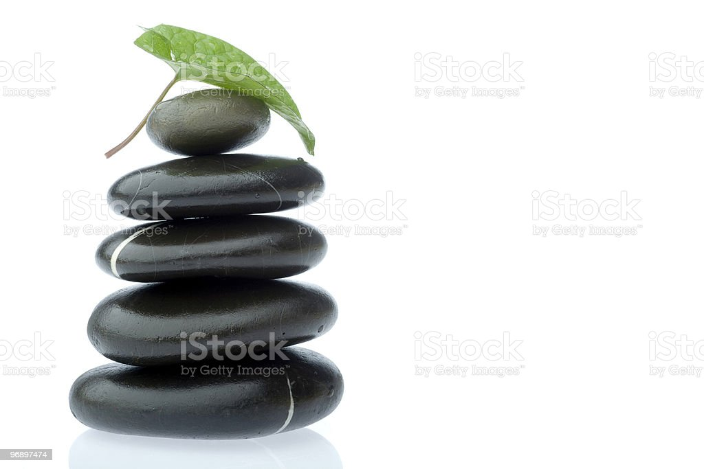 rocks with leaf royalty-free stock photo