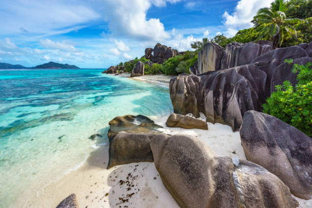 rocks,white sand,palms,turquoise water at tropical beach,la dique,seychelles paradise 17 stock photo