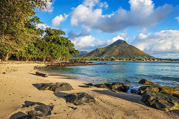 rocheux et de la plage de sable de la baie de tamarin - tamarin photos et images de collection