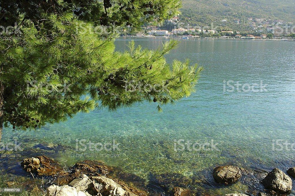Rocky Beach, Cavtat, Croatia. royalty-free stock photo