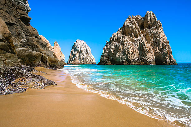 rocky beach in cabo san lucas - mexico stock photos and pictures
