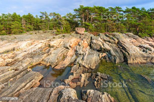 Photo of Rocky beach landscape and a forest