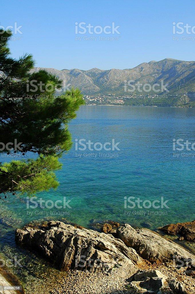 Скалистые берега, Cavtat, Хорватия. Стоковые фото Стоковая фотография