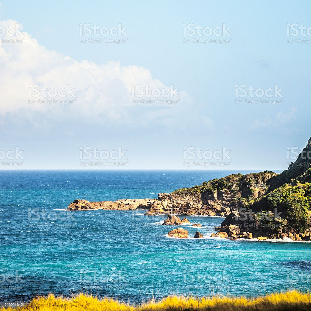 Rocky coast, Jamaica. stock photo