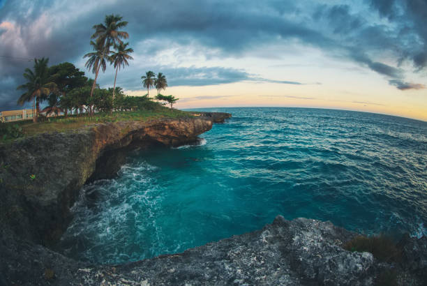 rocky coast of caribbean sea and palm trees at sunset - rocky coastline stock pictures, royalty-free photos & images