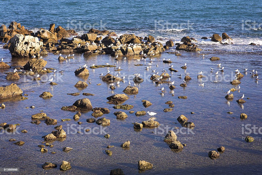 Rocky coast on the French Riviera royalty-free stock photo