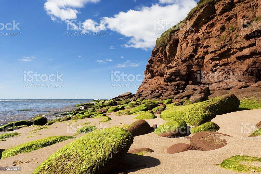 Rocky coast. stock photo