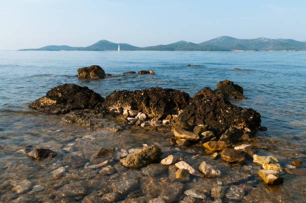 rocky coast with a view of adriatic sea - rocky coastline stock pictures, royalty-free photos & images