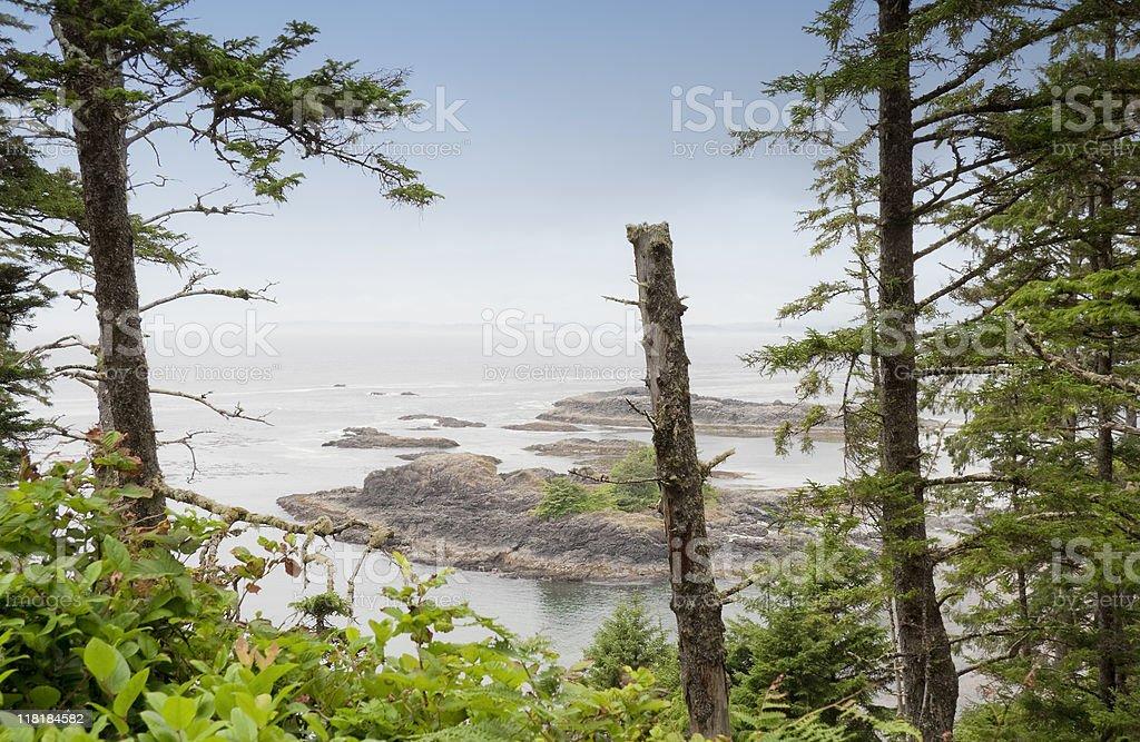 Rocky Coastline on the Pacific Ocean stock photo