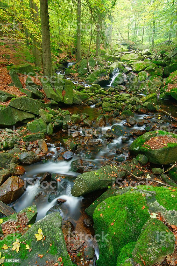 Rocky Forest Stream II royalty-free stock photo