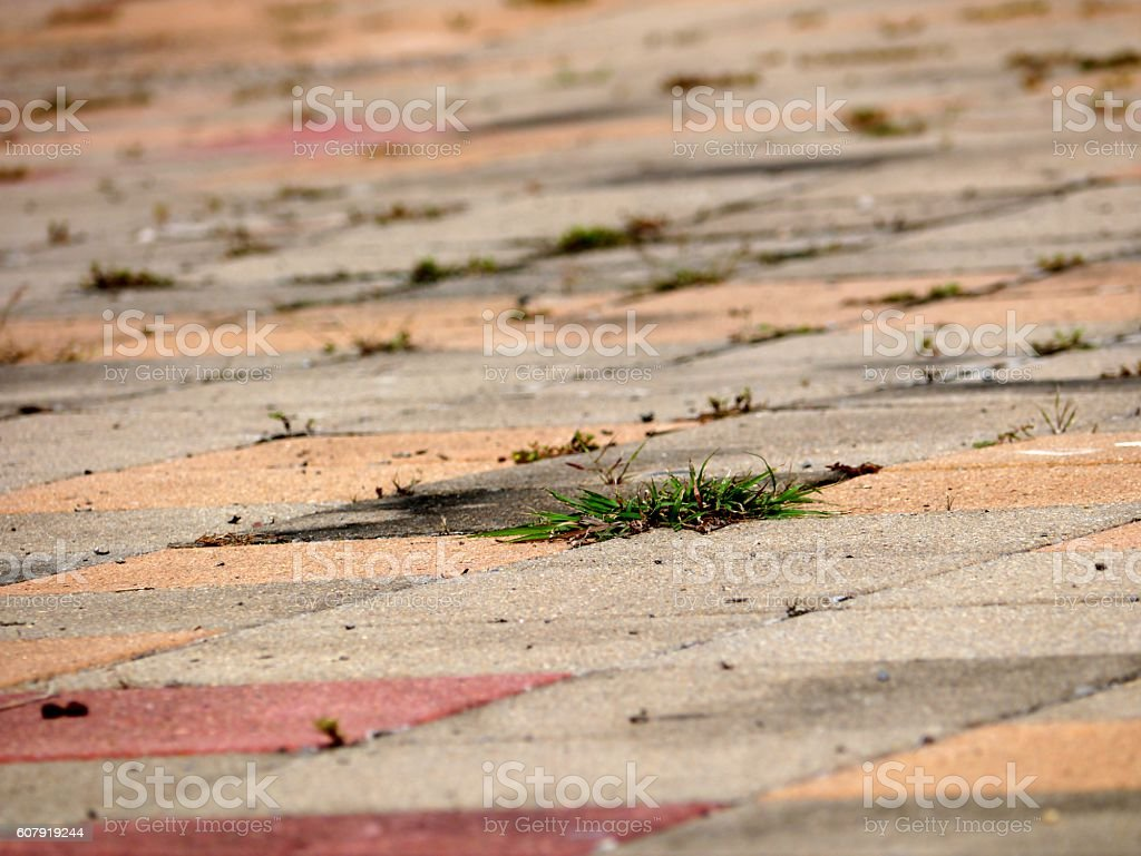 Rocky Ground stock photo