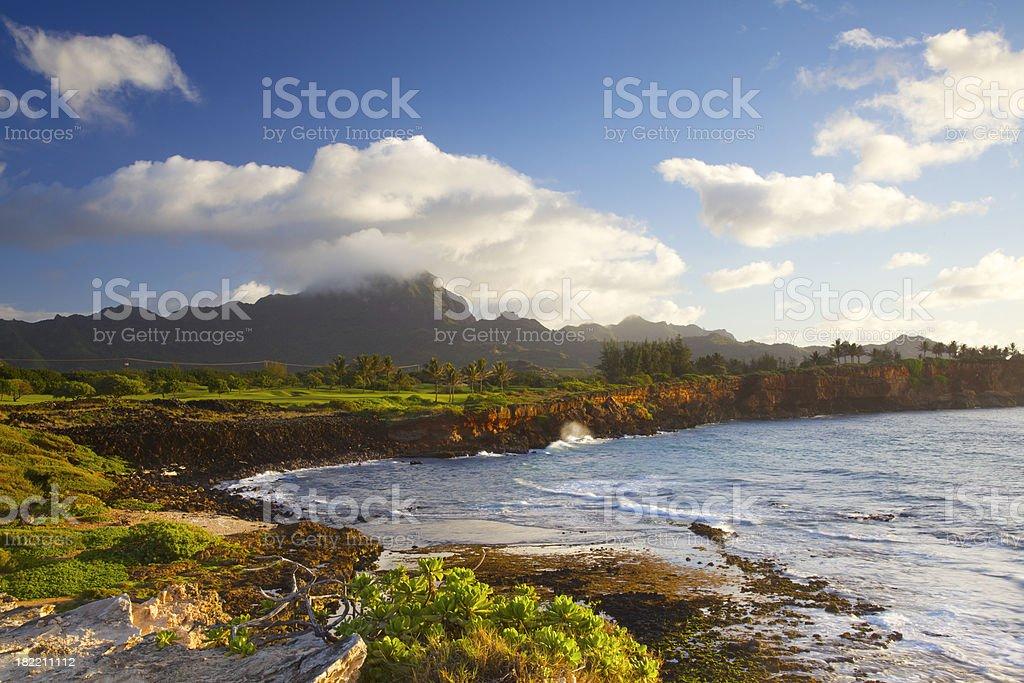 Rocky Hawaiian Coastline royalty-free stock photo
