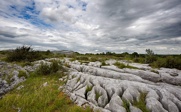 rocky landscape of the burren in county clare, ireland - the burren stock pictures, royalty-free photos & images