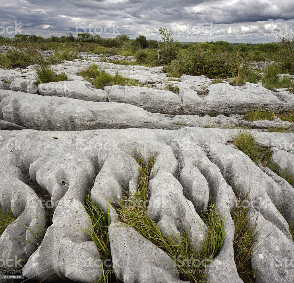 Rocky landscape of The Burren in County Clare, Ireland stock photo