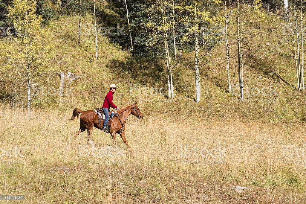rocky mountain autumn horseback riding royalty-free stock photo
