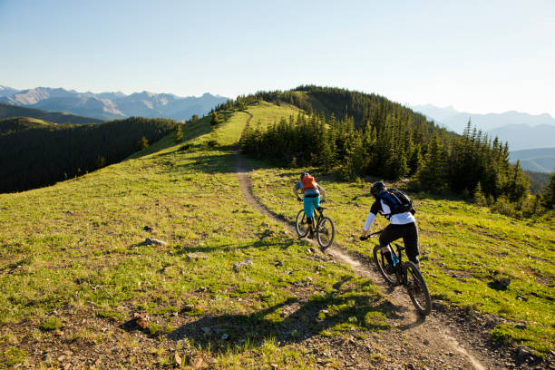 Rocky Mountain Bike Adventure Two young men ride their mountain bikes down a singletrack trail in the Rocky Mountains of Canada. They are both riding enduro-style mountain bikes and are wearing hydration backpacks. mountain biking stock pictures, royalty-free photos & images