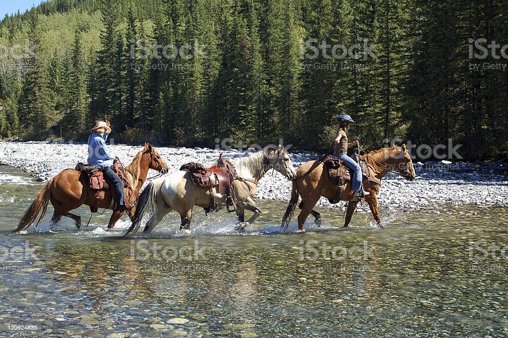 Rocky Mountain Horseback Riders fording a shallow river in summer stock photo