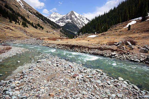 rocky mountain landscape a river runs through mountain meadows with forest leading to a distant snowcapped peak.  such beautiful nature scenery can be found in the san juan mountains of silverton colorado.  horizontal composition taken near silverton along the animas river. animas river stock pictures, royalty-free photos & images