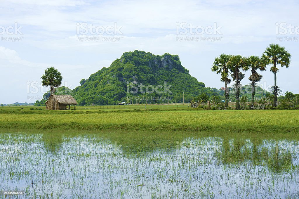 rocky mountain, Mekong Delta, Vietnam stock photo