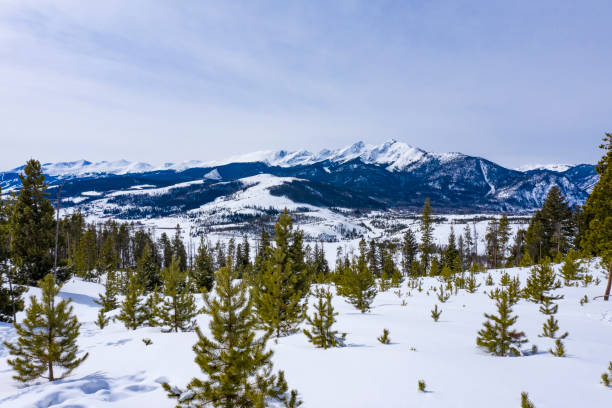 rocky mountain peaks above frisco colorado winter pine tree landscape - colorado tanne stock-fotos und bilder