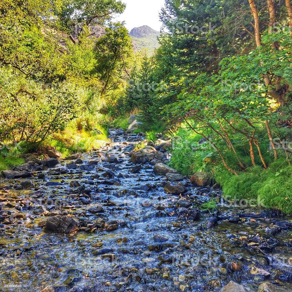 Rocky Mountain stream stock photo