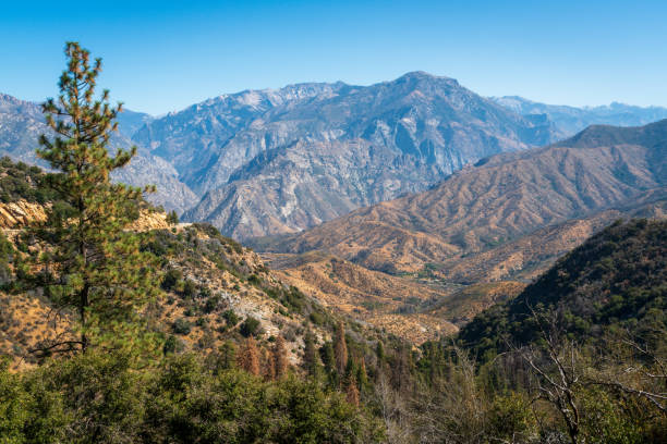 Rocky Mountains at Giant Sequoia National Monument stock photo