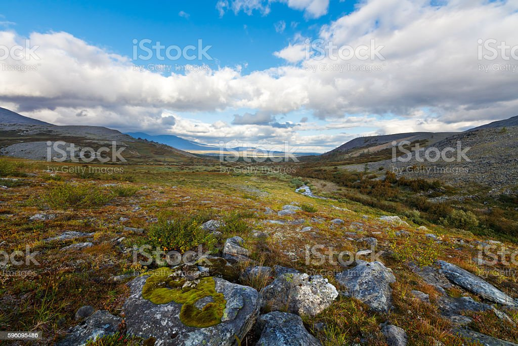 Rocky Mountains Landscape green valley Summer Travel serene scenic view royalty-free stock photo