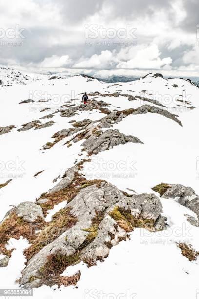 Rocky Mountaintop On A Snowy Day - Fotografias de stock e mais imagens de Ao Ar Livre