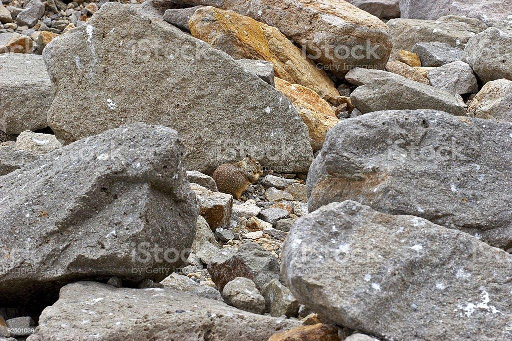 Rocky royalty-free stock photo